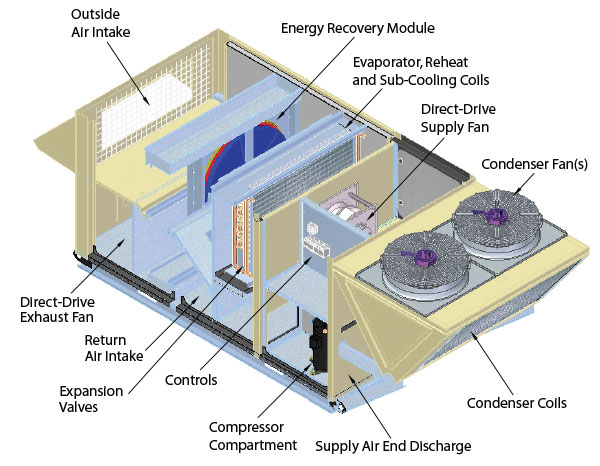 Carrier Air Handler Wiring Diagram also Wiring Diagrams For York Package Units as well Heat Pump Furnace Filter Location also Trane Xr13 Air Conditioning Wiring Diagram together with Carrier Rtu Diagram. on trane heat pump wiring diagram moreover goodman air handler